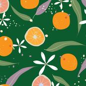 Citrus (SF04)
