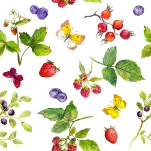 Forest berries and butterflies. Watercolor