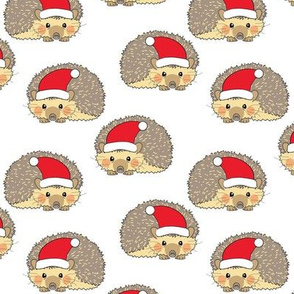santa hedgehogs curled in a ball