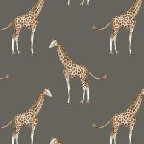 """4"""" Giraffe Print Brown Back"""