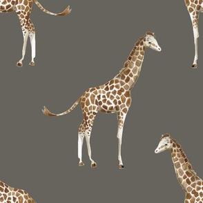 """8"""" Giraffe Print Brown Back"""