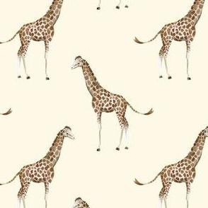 "4"" Giraffe Print Ivory Back"