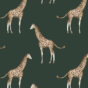 "4"" Giraffe Print Olive"