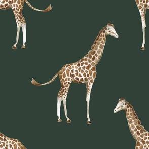 "8"" Giraffe Print Olive"