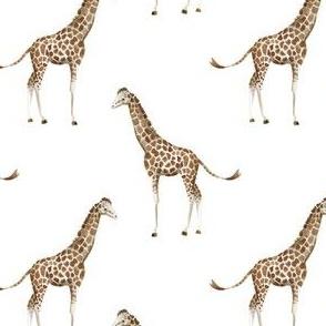 """4"""" Giraffe Print"""