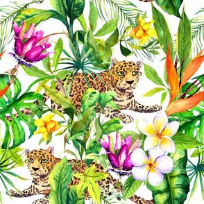 Wild cheetah in tropical jungle. Watercolor