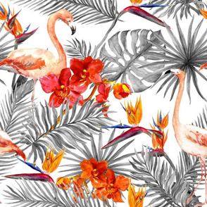 Flamingo birds, exotic orchid flowers and tropical leaves. Monochrome black and white colors