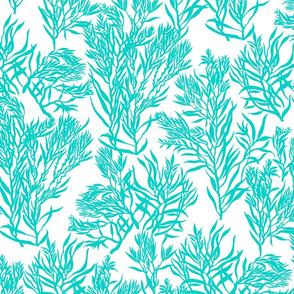 Breezy Coral- Aqua and White