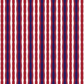 Montreal Canadiens Hockey Stripes Team Colors Blue Red White