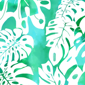 Monstera watercolor-aqua-green