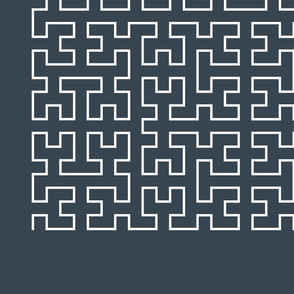 Iterated Hilbert Curve