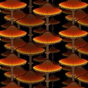 Brown Stacked Mushrooms