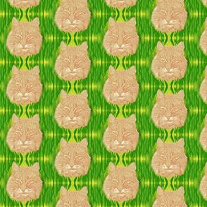 Bobcat III sm by DulciArt,LLC