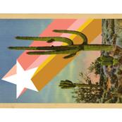 Painted Desert Tea Towel* (Cactus)    shooting star vintage postcard retro 70s Wild West western cut and sew diy kitchen