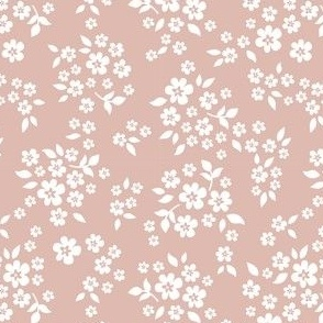 Whimsy dusty pink