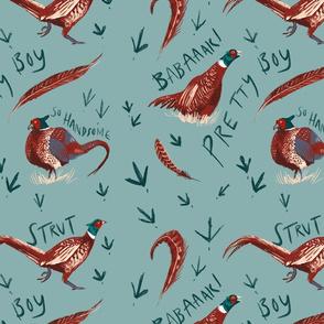 Pretty Boy Pheasant