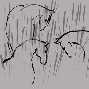 horse companionship, grey