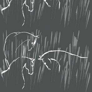 horse companionship, dark grey