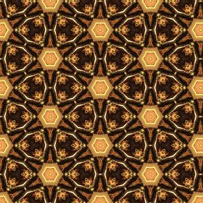Earth tones kaleidoscope web