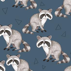 Sweet Raccoons on Blue