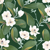 Chinoiserie Jade Magnolias