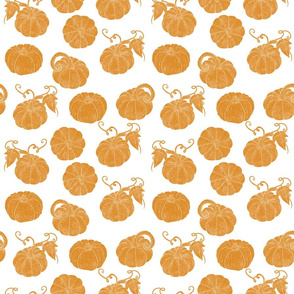 Pumpkin Patch White