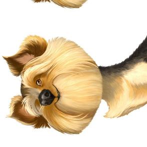 Yorkshire Terrier Cartoon Caricature