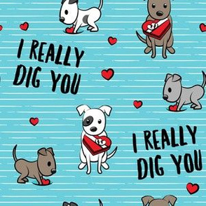I really dig you! - blue stripes - pit bull valentines day - LAD19