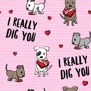 I really dig you! - pink stripes - pit bull valentines day - LAD19