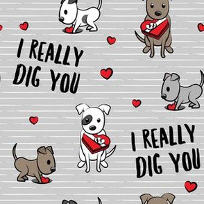 I really dig you! - grey stripes - pit bull valentines day - LAD19