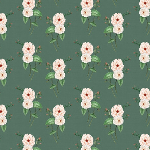 Roses Soft Peach Vintage Green 2
