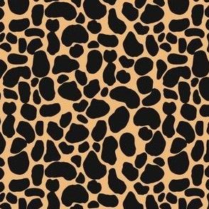 Asha Spots