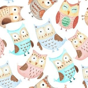 Owls watercolor animals