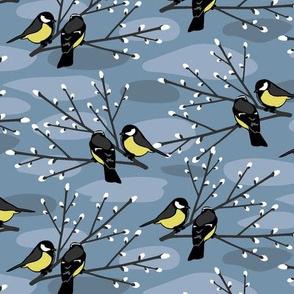 Early Spring Birds