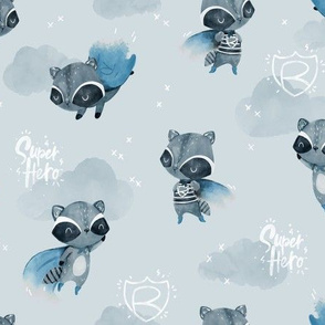 Raccoon Hero - blue cape - SMALL