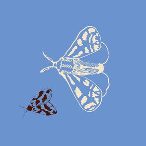 Woodland Moths Tea Towel