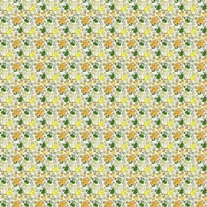Citrus pop on white 2x2