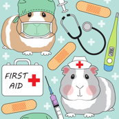 doctor and nurse guinea pigs