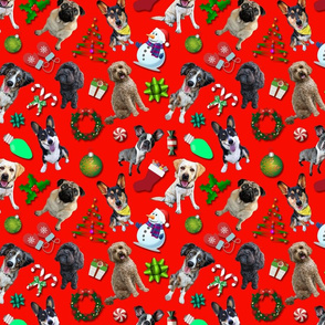 Christmas Dogs on Red