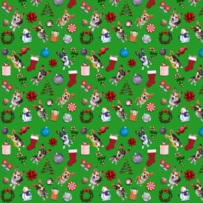 Corgi Christmas Chaos