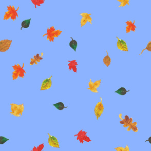 Watercolor Fall Leaves - Blue Background