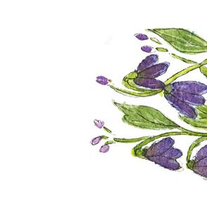NoddingVioletflowers_TT
