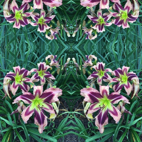 swallowtail summer daylilies fabric