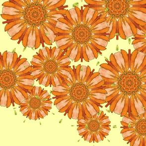 OrangePinwheelNatursiums_TT