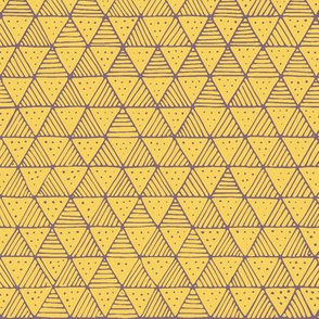 Yellow Purple Line Triangles