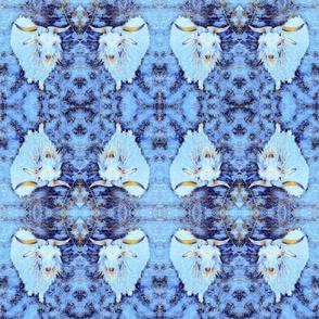 THF - Blue goat