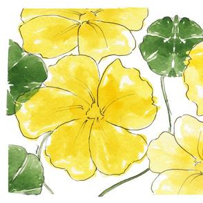 Yellow Nastursiums_TT