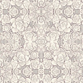 Succulent Rosette Lacy Pattern In Greys