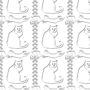 Cat Line Drawings on White
