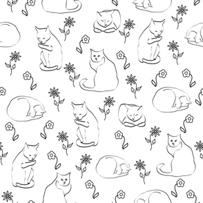 Cats and Flowers on White